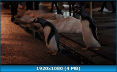 Пингвины мистера Поппера / Mr. Popper's Penguins (2011) BD Remux + BDRip 1080p / 720p + DVD5 + HDRip
