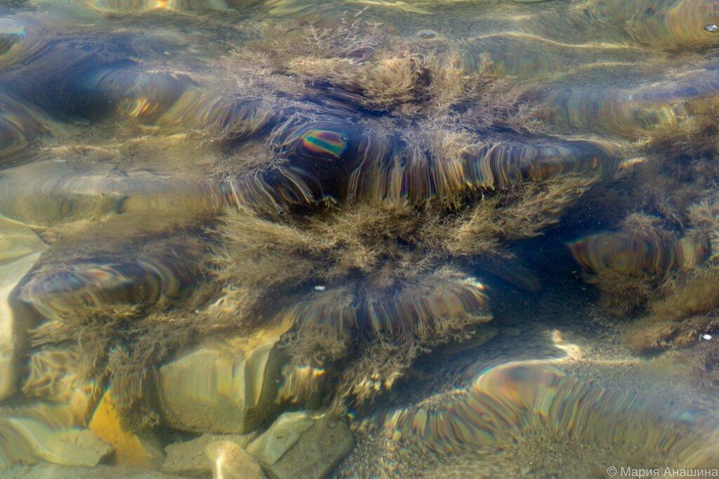 Вода, Черное море