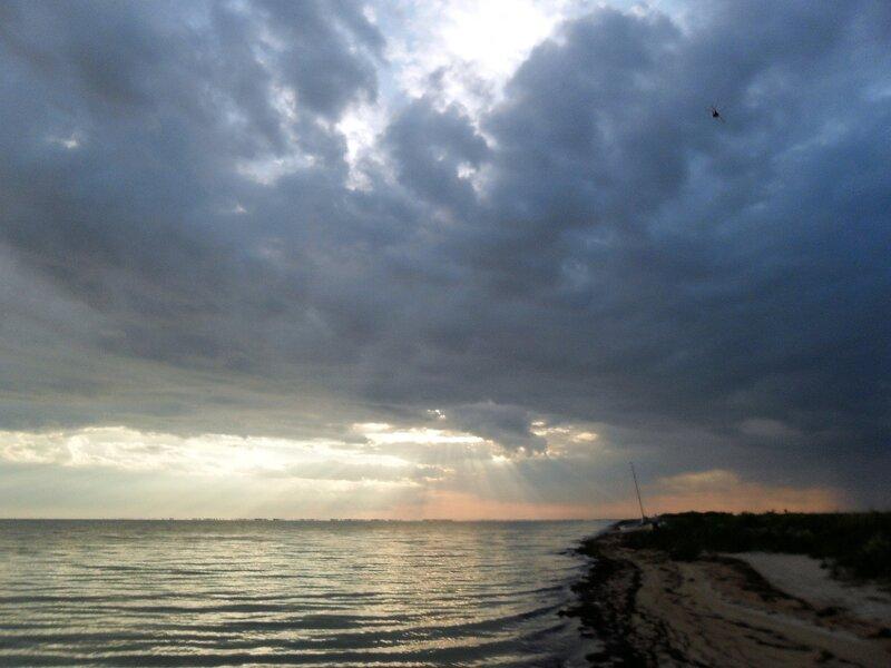 На берегах Бейсугского лимана, лето 2011