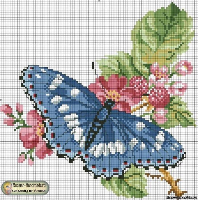 Вышивки бабочка схемы