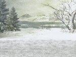 R11 - Winter Time - Back 024.jpg