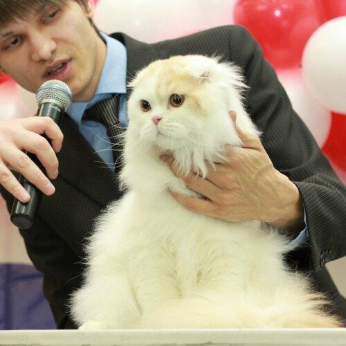 Best Junior of Breed - 48 Валентин Уральская Сказка (M) SFL d 21 02 Вл. Головинова Е.В.,