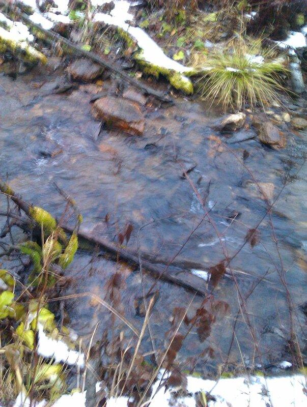 Чистый ручей