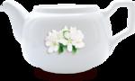 kimla_coh_teapot_sh.png