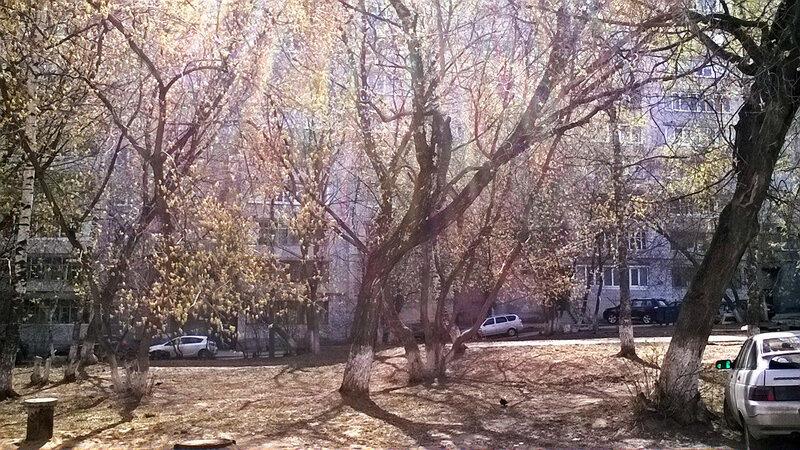 https://img-fotki.yandex.ru/get/4420/130932895.f/0_f496d_4f402776_XL.jpg