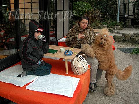 A cup of tea at Dazaifu Tenmangu