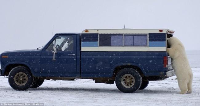 Исследование Арктики коренными жителями.