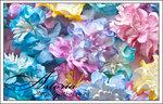 Радуга цветов.jpg