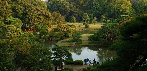 Rikugien Garden парк в Токио.
