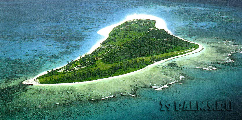 Bird Island Lodge