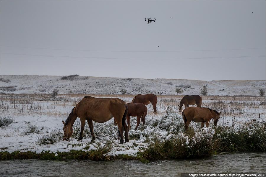 Казахский пастух с дроном