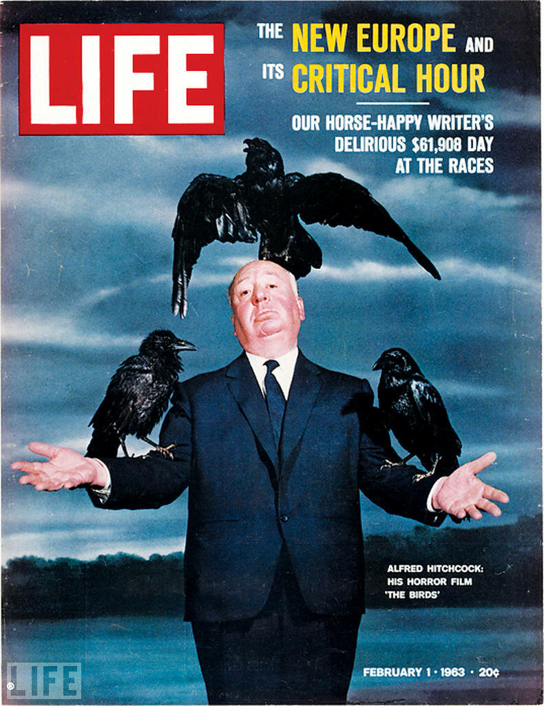 cover movie The Birds by Alfred Hitchcock