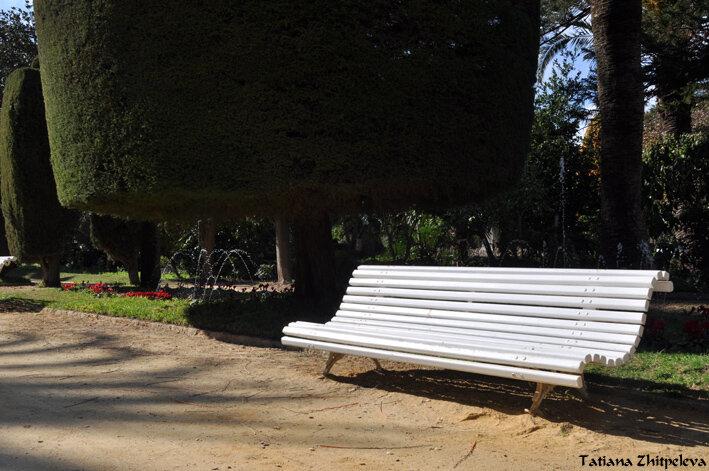 вид парка со скамейкой
