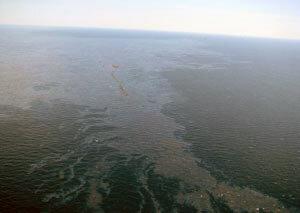 Следственными органами выдвинуты версии по факту  затопления на Сахалине плавучей буровой установки