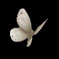 Fairymist_papillons7.png