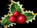 christmas (92).png