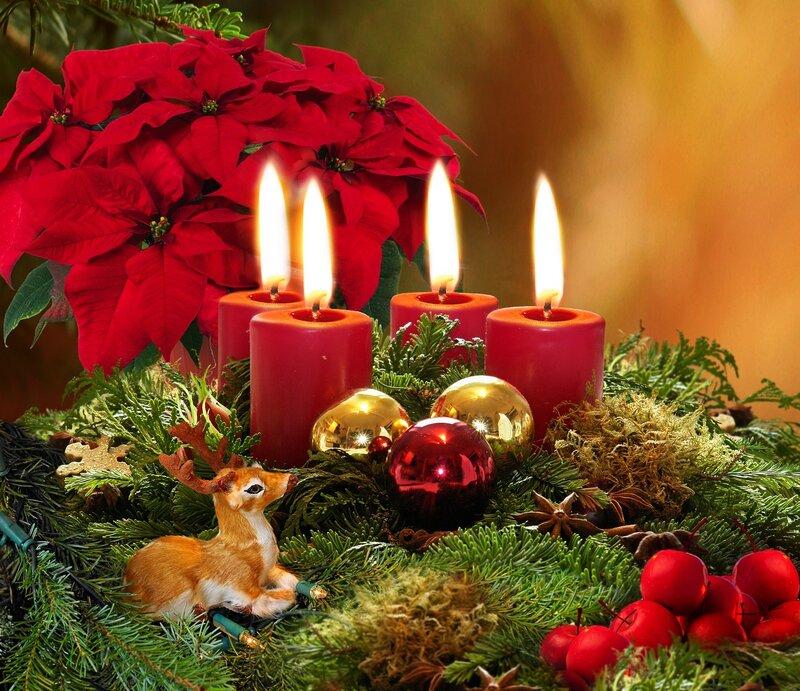 Оленёнок обои для рабочего стола. елки обои для рабочего стола. ветки обои для рабочего стола. свечи обои для...