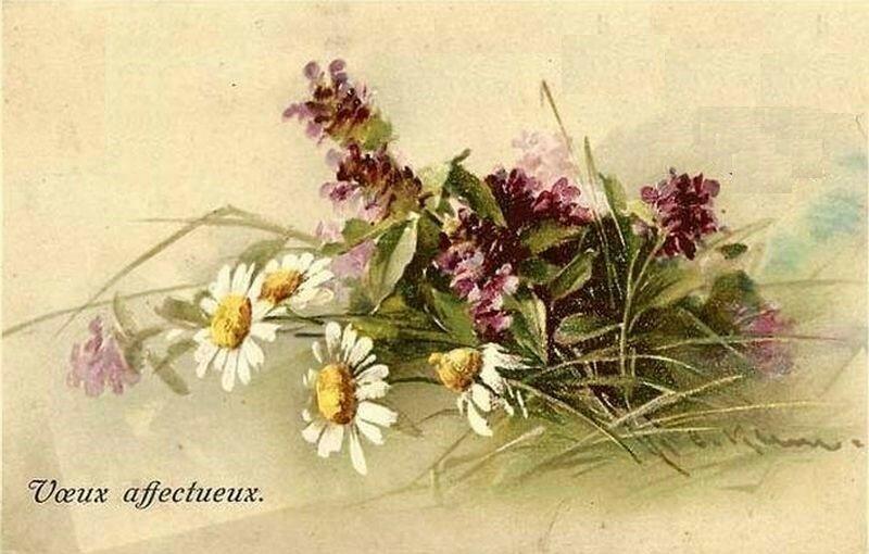 К. Кляйн. Полевые цветы.