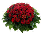 mds7288_Bunch_of_Roses.png