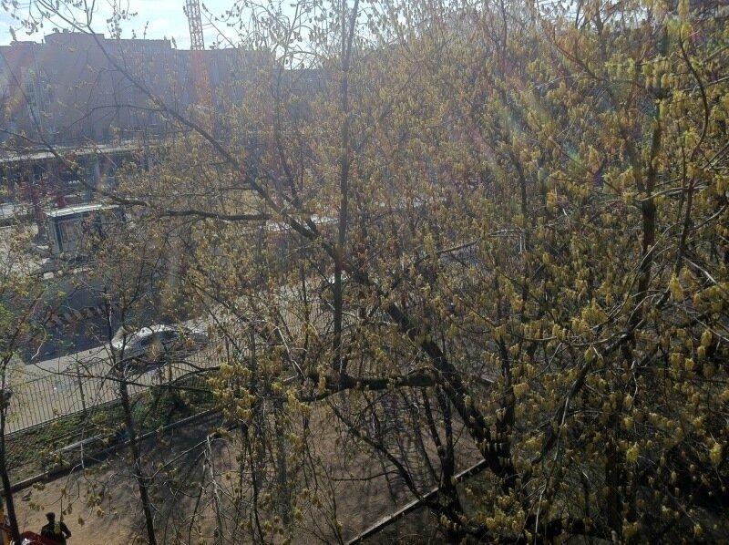 Вид с балкона северо-западного района