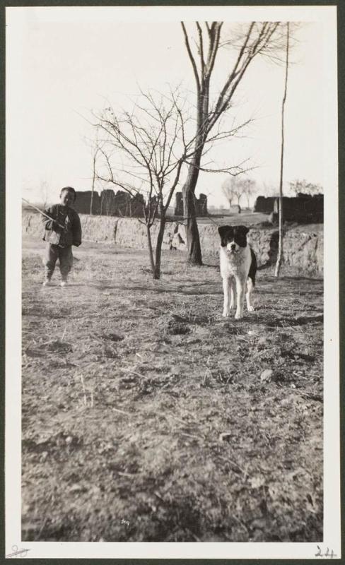 Близ городка Чанъу, собака и ребенок-пастух