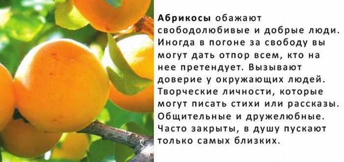 http://img-fotki.yandex.ru/get/4423/130422193.8f/0_6fba5_ae6ba833_orig