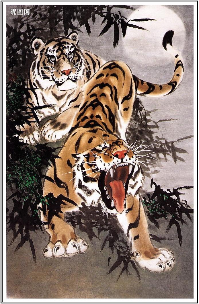 Картинки китайские тигры