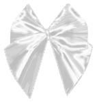 ribbon_by_roula33-d3e22wx.png