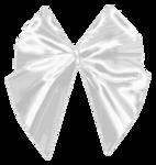 ribbon_by_roula33-d3e22wx.png