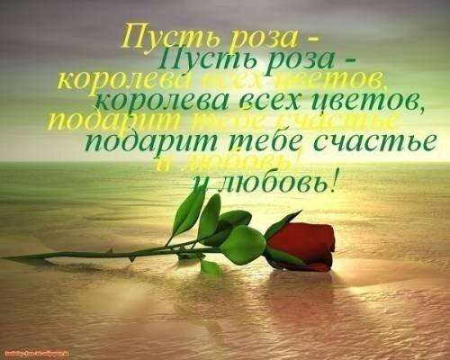 http://img-fotki.yandex.ru/get/4424/103531093.b4/0_75e0d_b9ebf3ed_XL