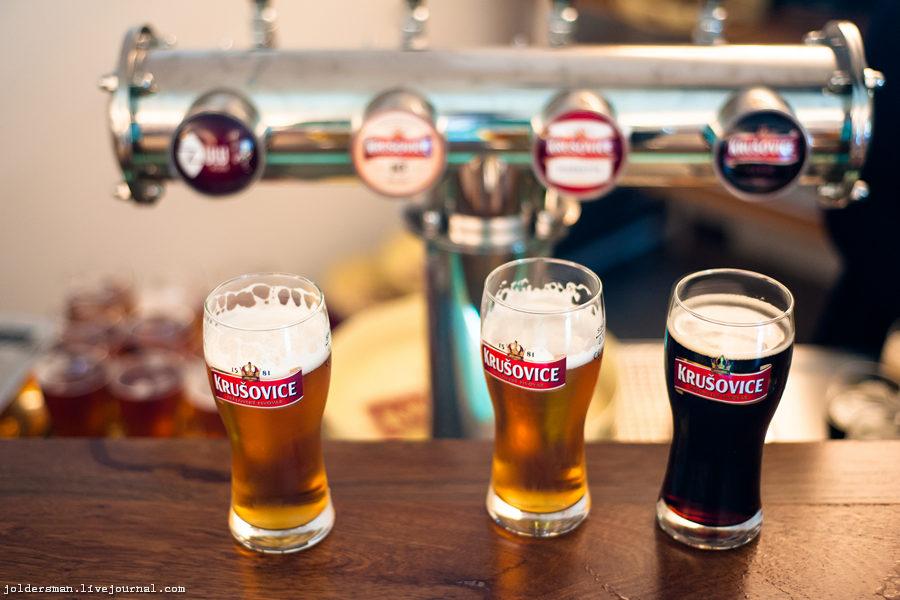 дегустация чешского пива
