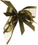 bow6.png