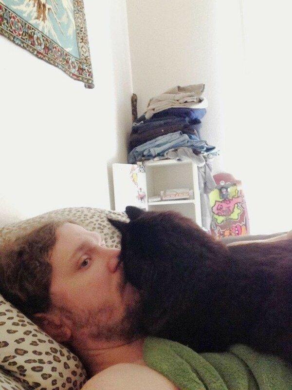 Они не дают вам никакого личного пространства и всегда норовят уткнуться своим носом в ваше лицо, даже когда вы всё ещё спите.