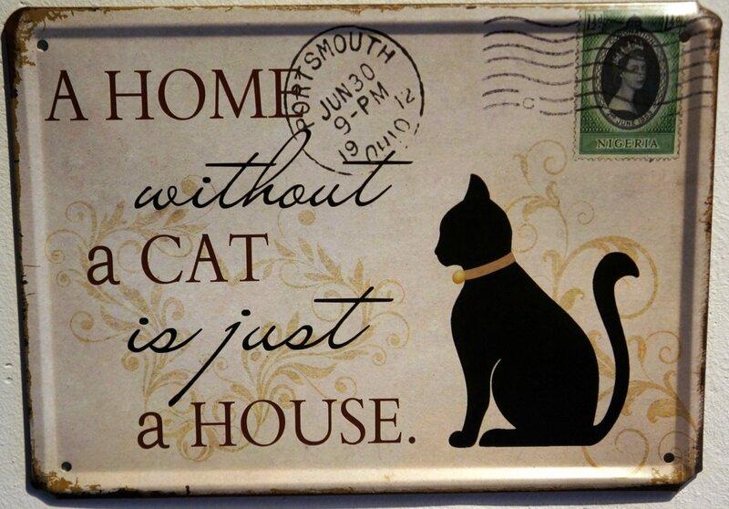 Дом без кошки это просто здание