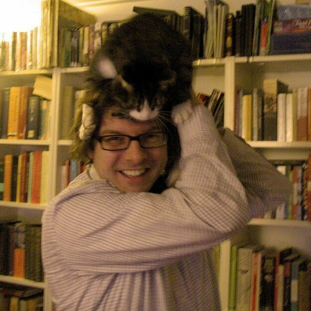 Коты на человеческих головах