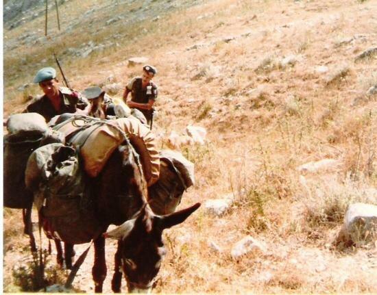 4cie-sud-liban-82-centrale-lectrique-au-8-on-sait-tout-faire-meme-motiver-des-bourricots.jpg