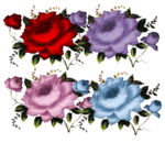 CJ_Colored Roses 3Lg.png