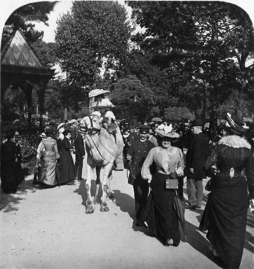1906. Сад Аклиматасьон. Променад