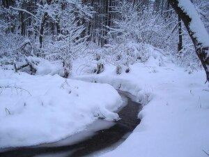 Этот ручей зимой не замерзает.