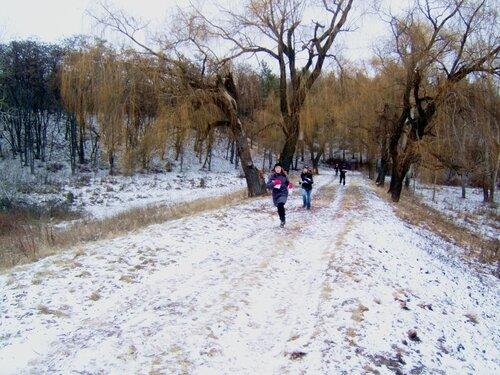 Снежинка-2012