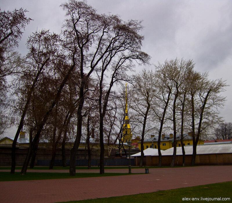 Петропавловская крепость. На западной оконечности Заячьего острова разбит небольшой парк - традиционное место для всяких пафосных вечеринок и концертов.
