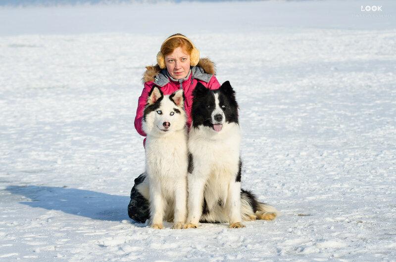 Мои собаки: Зена и Шива и их друзья весты - Страница 9 0_a8436_3b43b814_XL