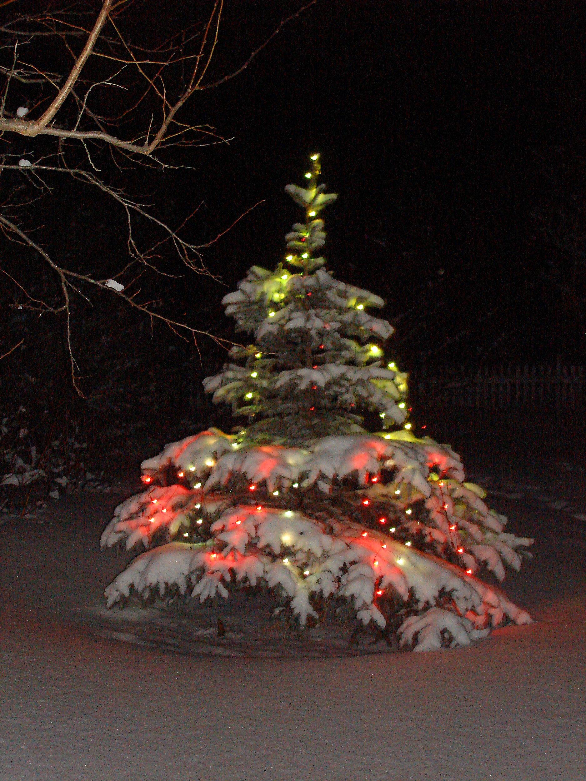 Зима,с.Остров,Новый год