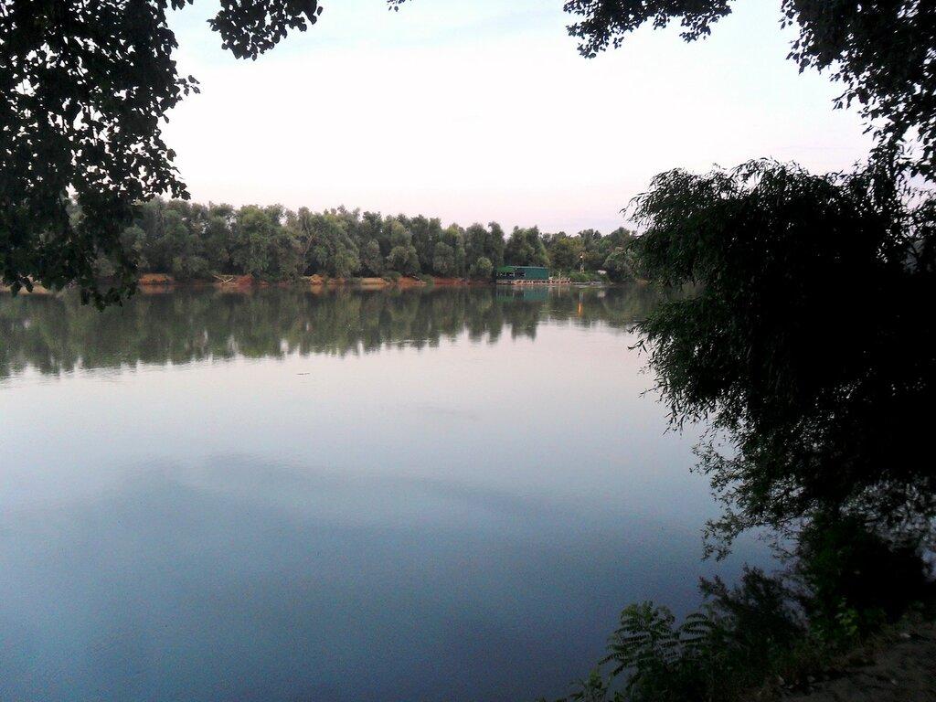 Утром, у реки Протока ... SAM_3481.JPG