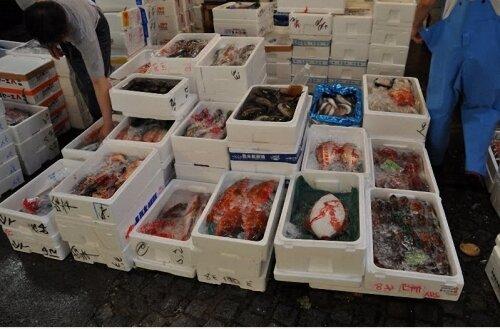 Морепродукты на рыбном рынке Цукидзи.