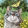 аватарка: кот и бабочка