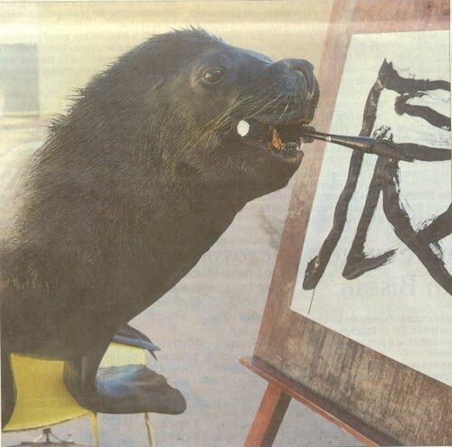 ЛЕО - морской лев за творчеством
