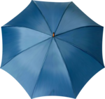 AD_I_walk_in_the_rain (2).png