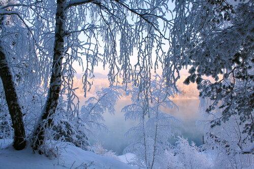 Фантазии зимы