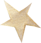 NLD Star (2).png